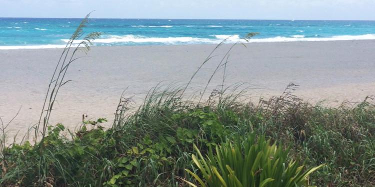town_of_palm_beach_public_works.jpg