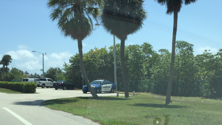 Summer Crime in The Town of Palm Beach