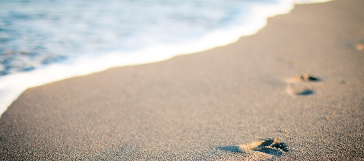 Men-of-War Plague South Florida Beaches