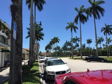 palm_beach_parking_meters.jpg