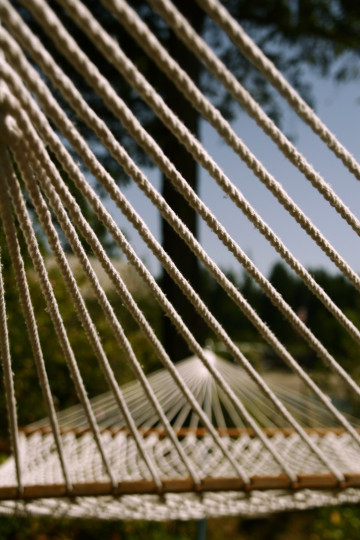 hammocks_in_the_town_of_palm_beach.jpg